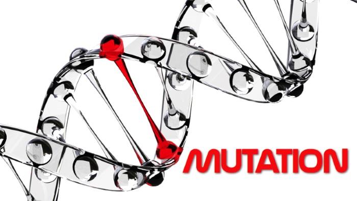 Jak dobre są Twoje testy? Czyli kilka słów o testowaniu mutacyjnym.